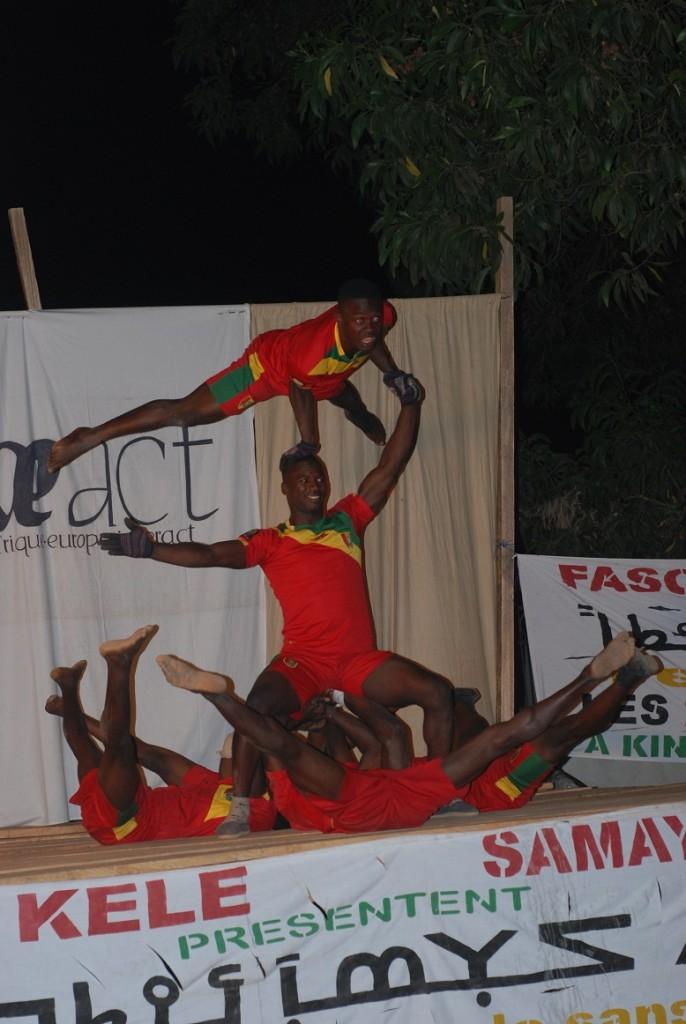acrobates
